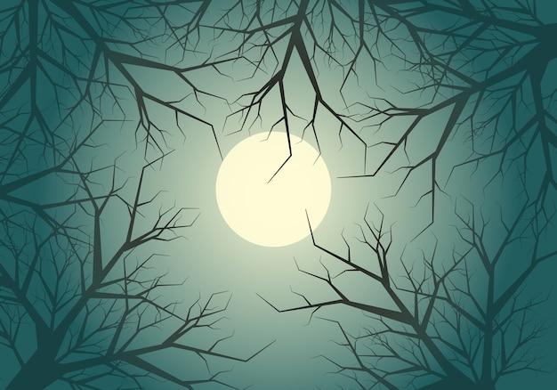 Brindille sèche arbre jungle lune ciel clair de nuit fond.