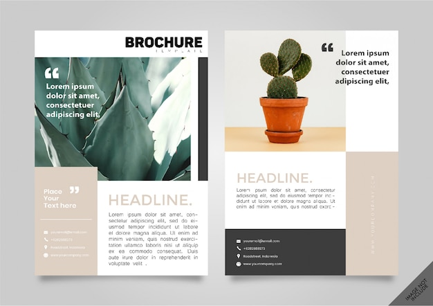 Brochure lookbook nature titre