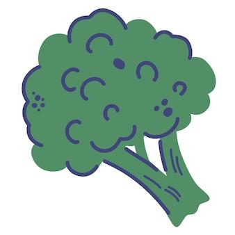 Brocoli. main dessiner des légumes frais et sains. illustration de vecteur de dessin animé isolée sur fond blanc.