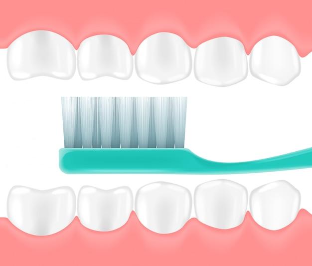 Brosse à dents réaliste dans la bouche