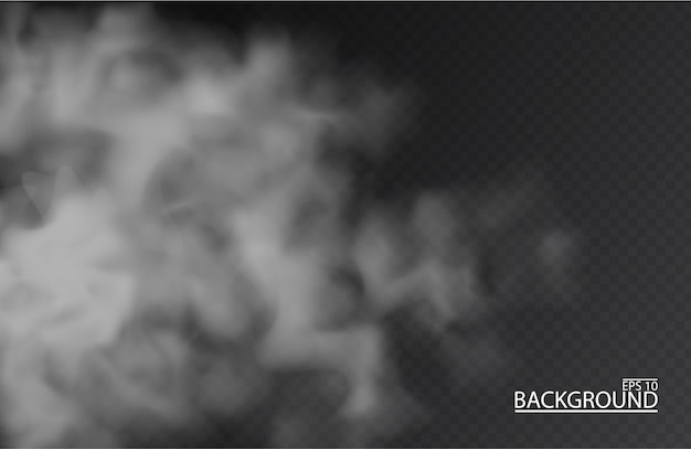 Brouillard blanc ou fumée sur fond transparent isolé. smog.