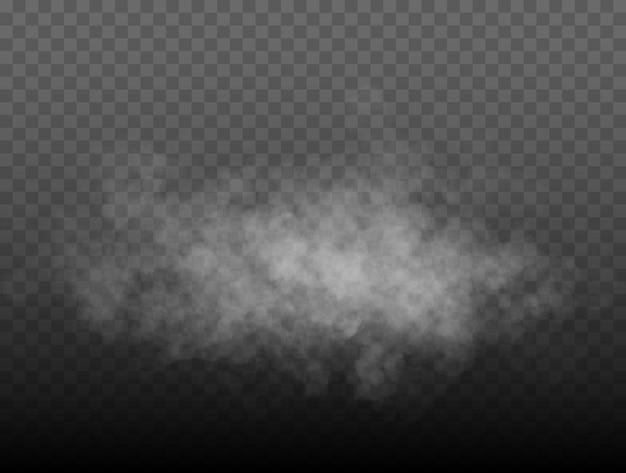 Brouillard ou fumée isolé transparent effet spécial blanc vecteur nébulosité brume ou fond de smog vec...
