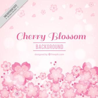 Brouillé fond de fleurs de cerisier dans les tons rose