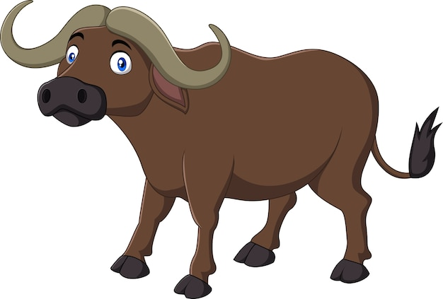 Buffalo de dessin animé isolé sur fond blanc
