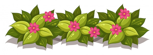 Buisson feuillu avec des fleurs