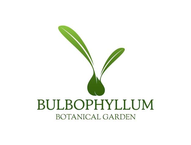 Bulbophyllum pour logo de pépinière d'orchidées à bulles