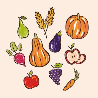 Bundle of thanksgiving day set d'icônes dans l'illustration de fond blanc