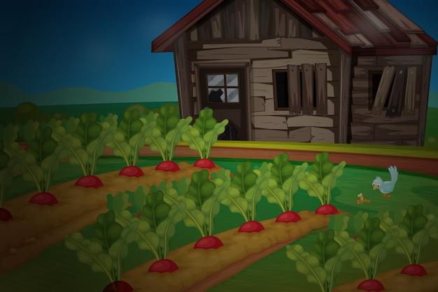Cabane en bois au potager