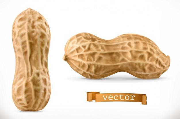 Cacahuète. icône réaliste 3d