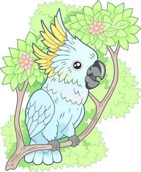 Cacatoès perroquet