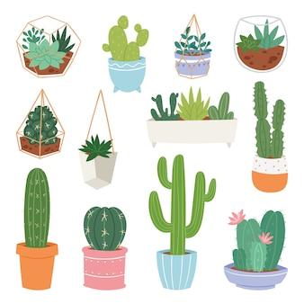 Cactus dessin animé cactus botaniques en pot mignon plante succulente cactacée botanique illustration sur fond blanc