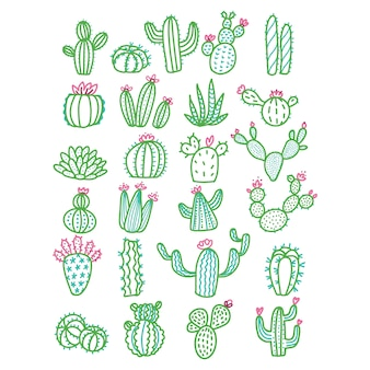 Cactus dessiné main mignon sans couleur de pots décrit illustration.