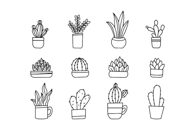 Cactus dessinés à la main en pot isolé sur fond blanc. collection de dessins vectoriels