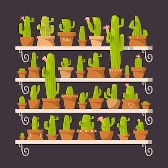 Cactus. étagère avec des fleurs. cactus en pots. serre de fleurs. intérieur floral.