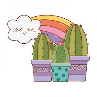 Cactus icon cartoon avec nuages