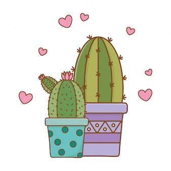 Cactus icon cartoon