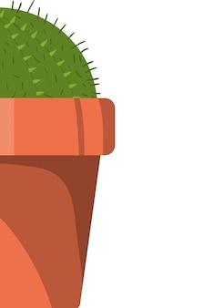 Cactus mignon avec icône isolé pot