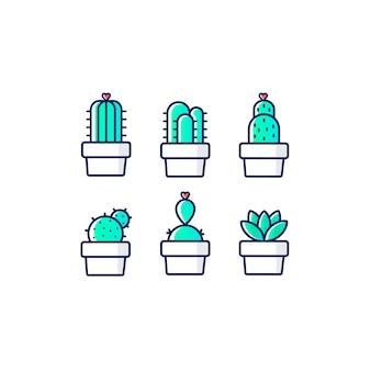 Cactus néon