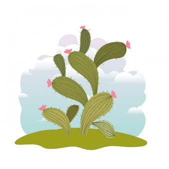 Cactus en paysage isolé