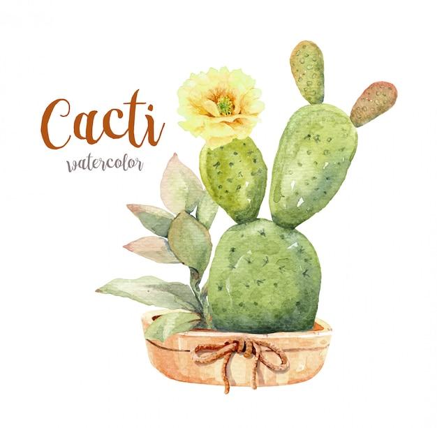 Cactus et plantes succulentes aquarelle sertie de pot.