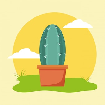 Cactus en pot dans le jardin