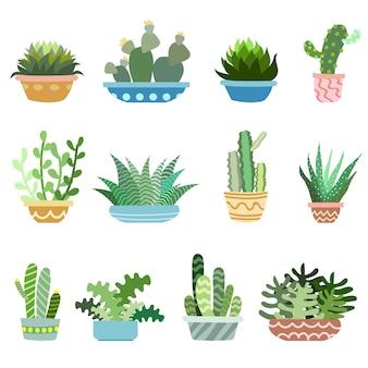 Cactus en pots vector ensemble