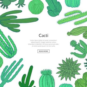 Cactus sauvages dessinés à la main