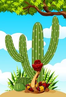 Cactus et serpent au sol