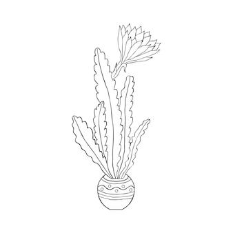 Cactus en style doodle isolé sur fond blanc. coloriage pour enfants et adultes.