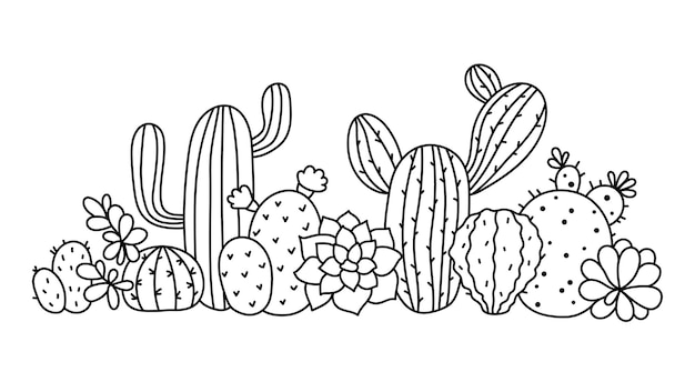 Cactus et succulentes bordure florale clipart doodle composition de cactus éléments vectoriels isolés