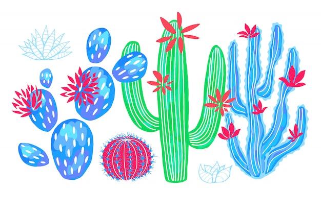 Cactus succulentes sauvages set fleurs colorées aquarelles roses collections.