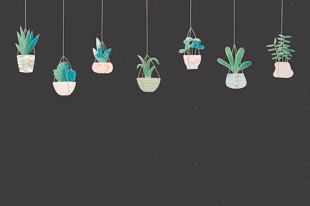 Cactus suspendus sur fond noir