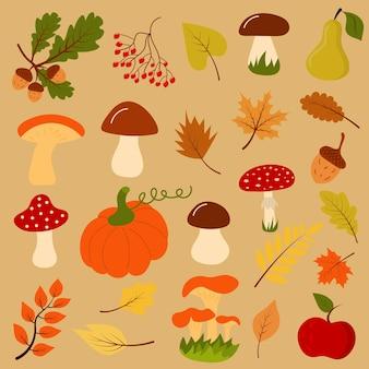 Cadeaux d'automne tels que champignons, citrouilles, glands, feuilles, fruits et baies. le concept est bonjour l'automne.