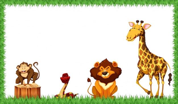 Cadre animaux dans la nature