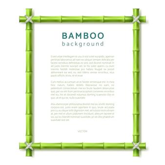 Cadre en bambou. fond de vecteur eco spa resort