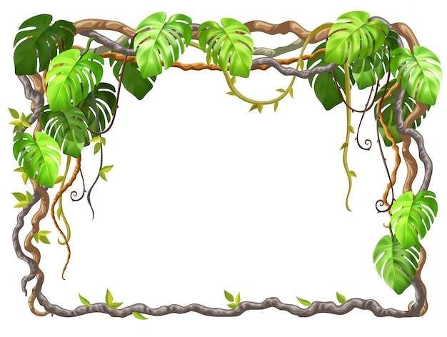 Cadre de branches de liane et de feuilles tropicales.