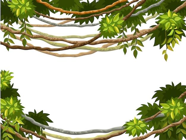 Cadre de branches de liane et de feuilles tropicales