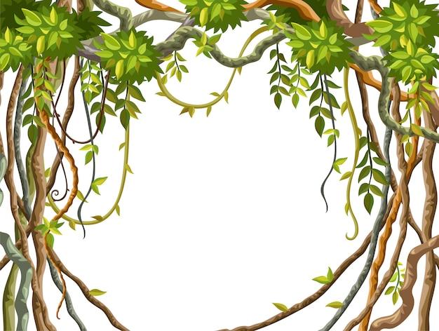 Cadre branches de liane et fond de feuilles tropicales.
