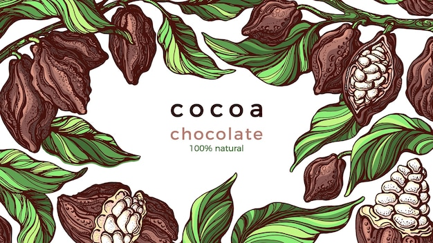Cadre de cacao. chocolat naturel. branche dessinée à la main, haricot, fruits tropicaux