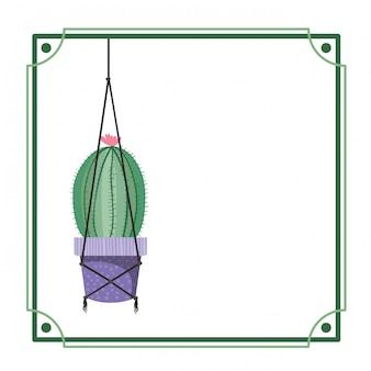 Cadre avec cactus sur des cintres en macramé