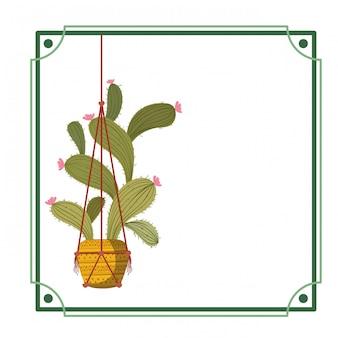 Cadre avec cactus sur l'icône de cintres en macramé