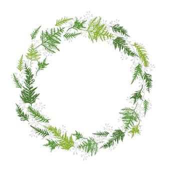 Cadre cercle de feuilles vertes de thuya, cyprès.