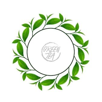 Cadre de couronne avec des feuilles de thé vert