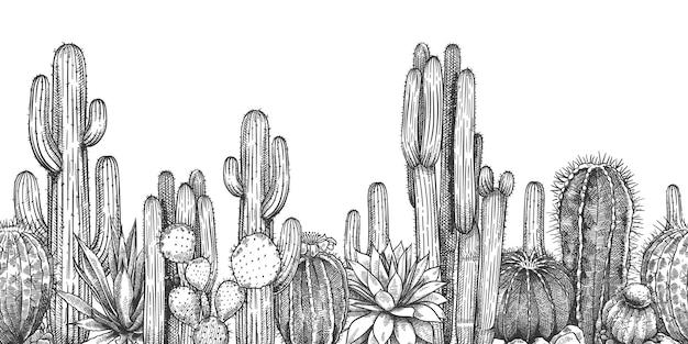 Cadre de croquis de cactus