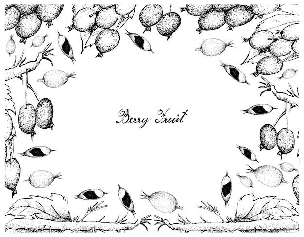 Cadre dessiné à la main de confiture de mûres fruits et mûres