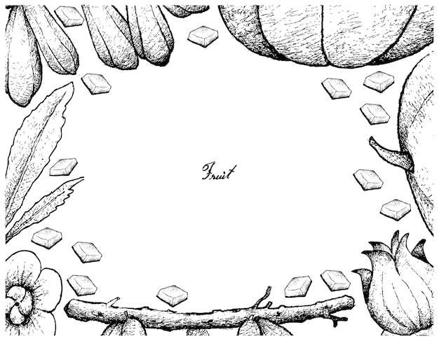 Cadre dessiné à la main de fruits frais sur fond blanc