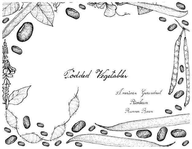 Cadre dessiné à la main de légumes podded