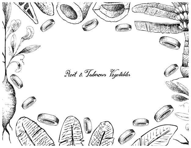 Cadre dessiné à la main de légumes racines et tubercules