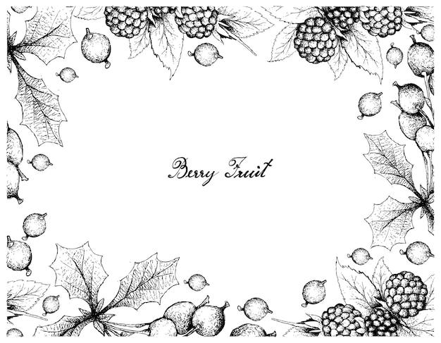 Cadre dessiné à la main de mûres de mûre et de barberries darwins