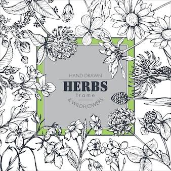 Cadre avec des éléments d'herbes et de fleurs sauvages dessinés à la main en noir et blanc